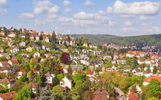 Aussicht auf Stadtteil mit vielen Bäumen und Wald im Hintergrund