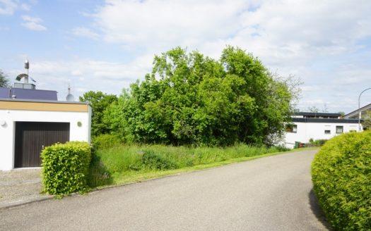 Zufahrtsstraße mit kleiner Wiese und Haus im Hintergrund