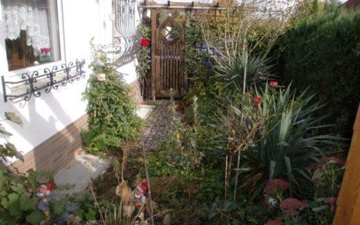 Dicht bewachsener Vorgarten mit Palmen, Büschen und Sträuchern
