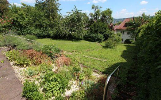 Weitere Ansicht auf den großen, bepflanzten Garten