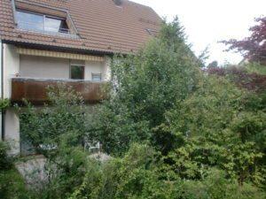 Balkon mit Bäumen und Gaube
