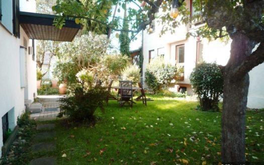 Grüner Vorgarten mit Gartenmöbeln und Sträuchern